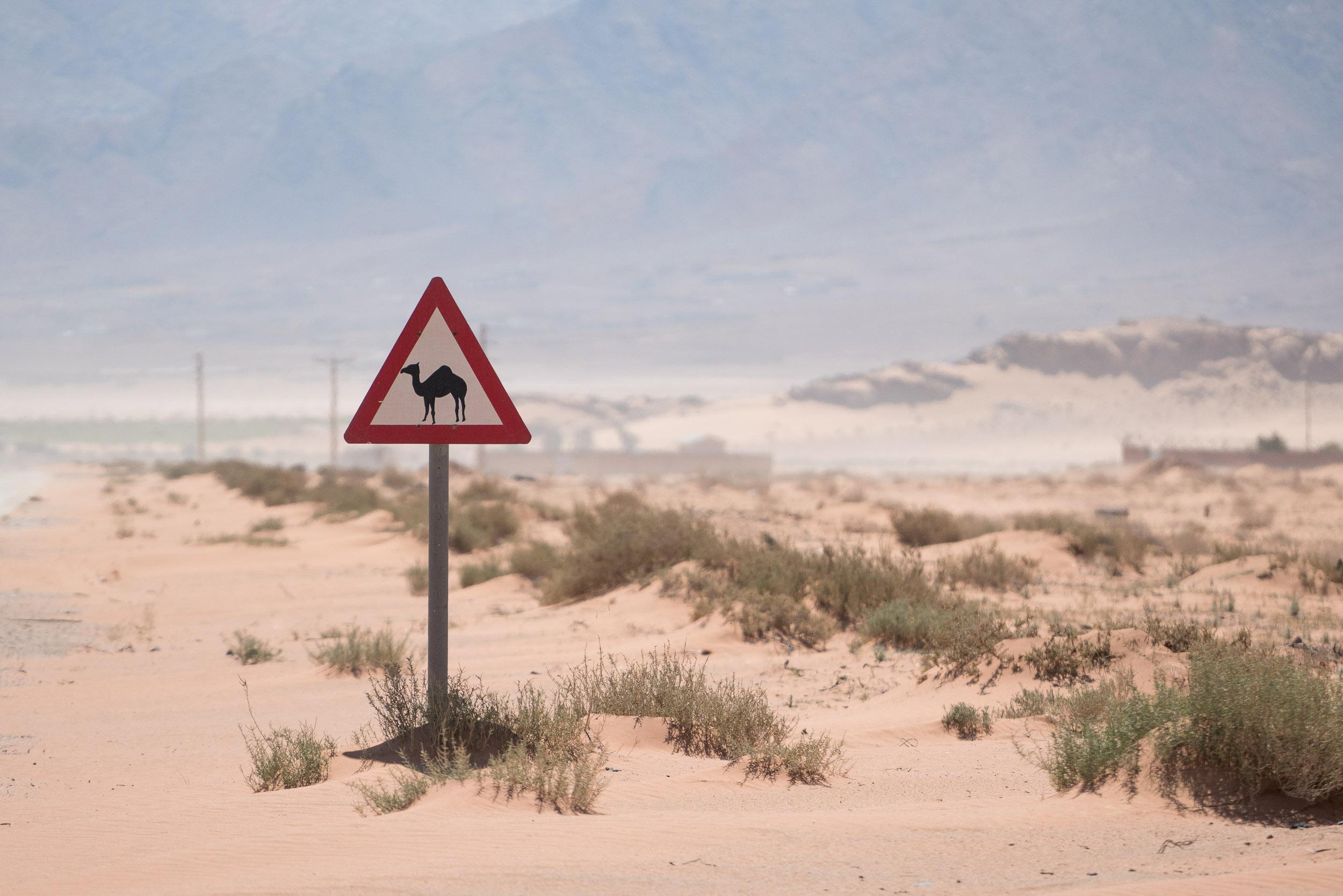 the_getaway_edit_jordan_wadi_rum-1.jpg