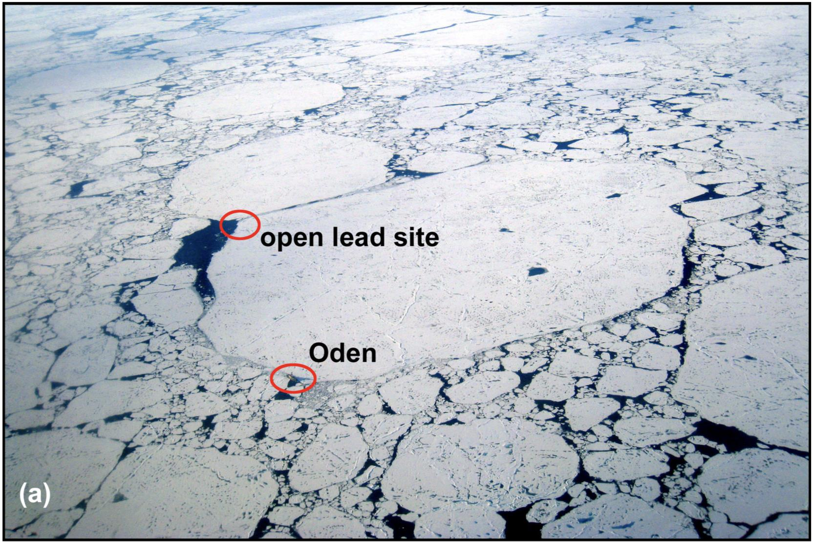 Oden and open lead site 2008.jpg