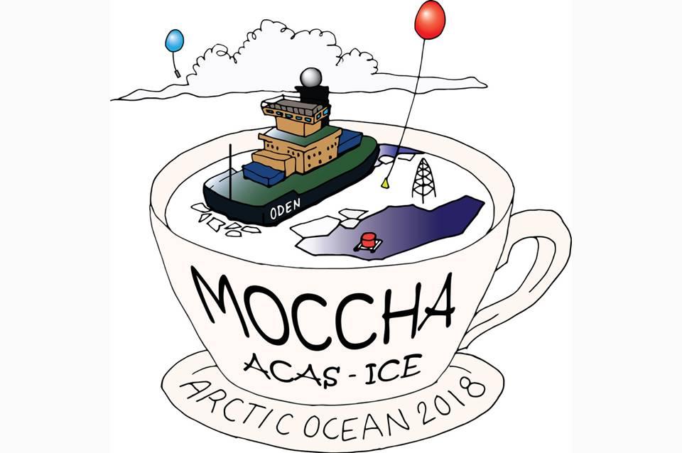 MOCCHA logo white reshaped.jpg