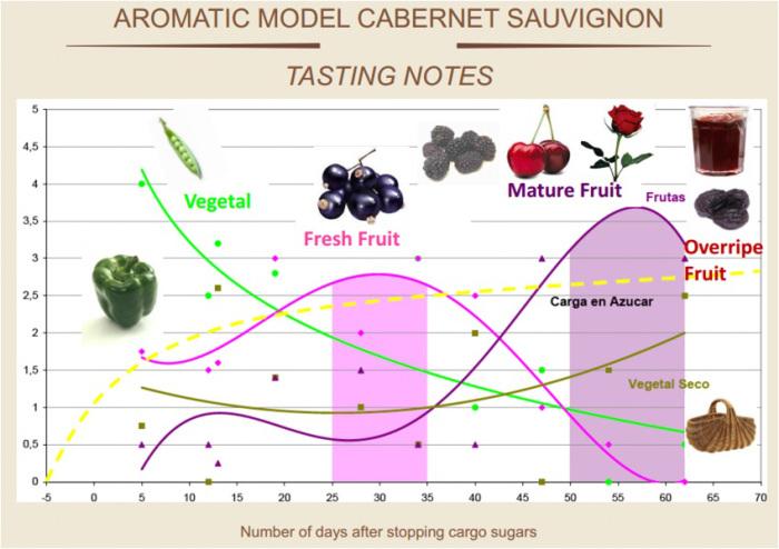 aromatics.jpg