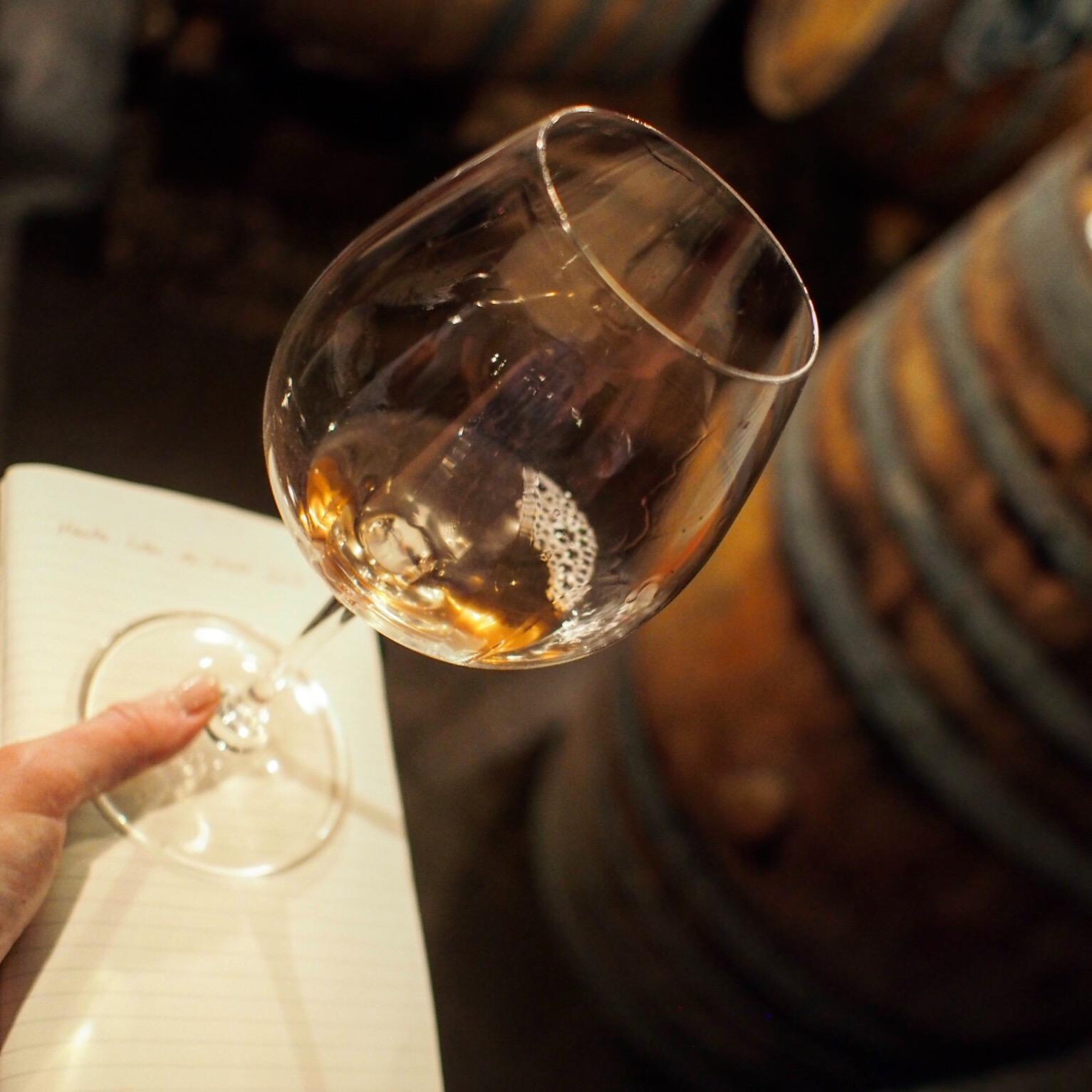 Jean-Yves Bizot's Bourgogne Hautes Côtes de Nuits: evades scoring