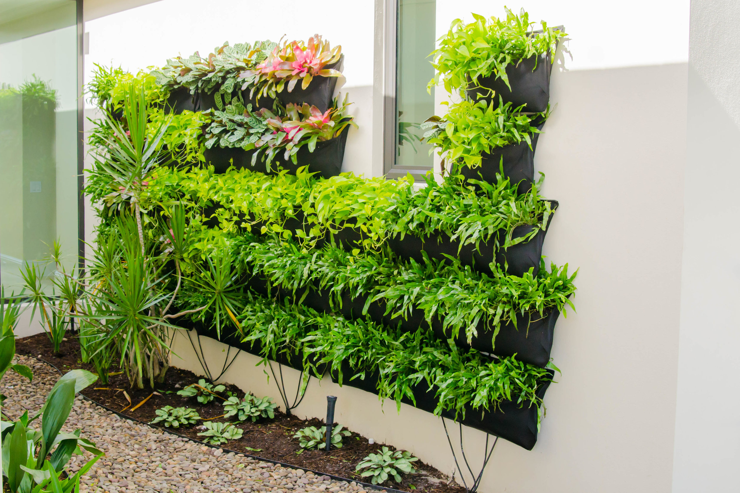 Living walls are an up and coming trend.