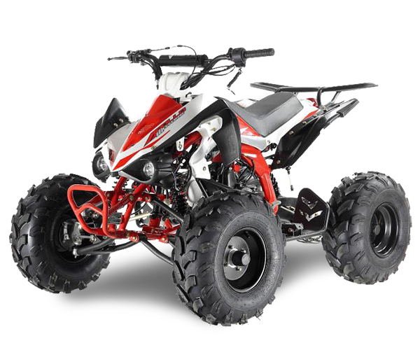 Apollo Panther - · Engine: From 110cc to 125cc· Fuel Power: Gasoline· Transmission: Auto or Manual· Starter: Electric· Brakes: Discs / Drum