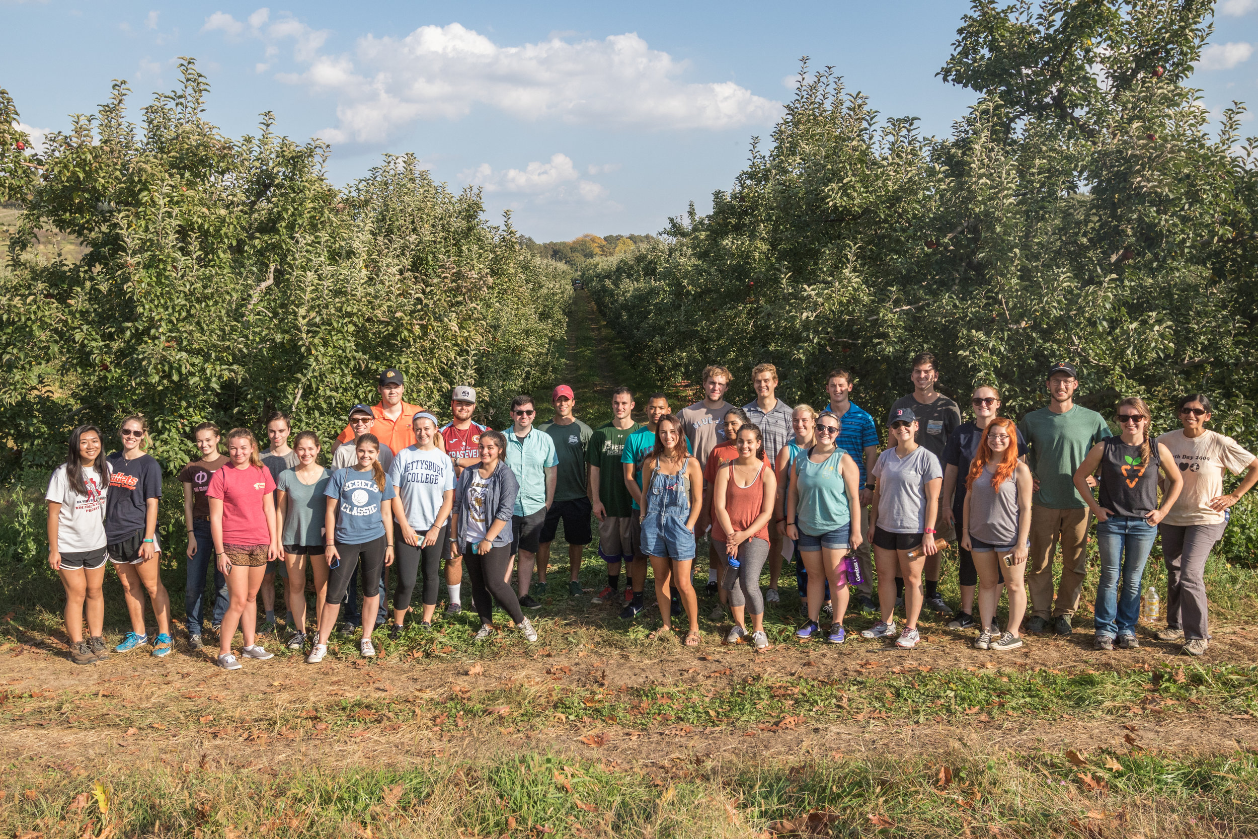 Gettysburg College gleaners at Peters Orchard