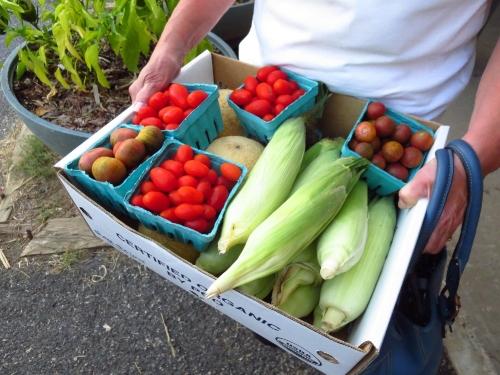 Produce Variety.JPG