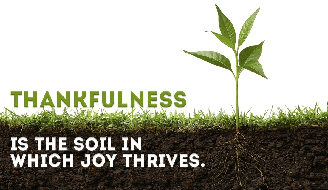 27674-cm-thankfulness-soil-joy-social.1100w.tn.png