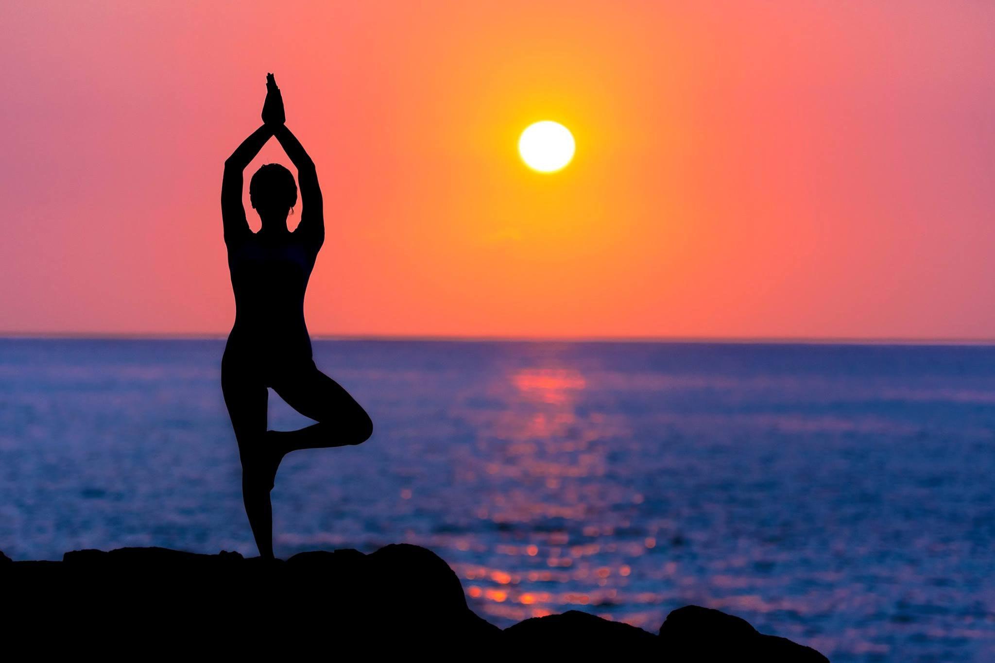 lifestyle & wellness -