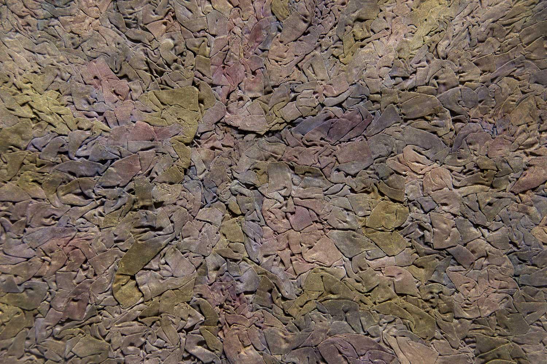 Detail of Muralis, Brass