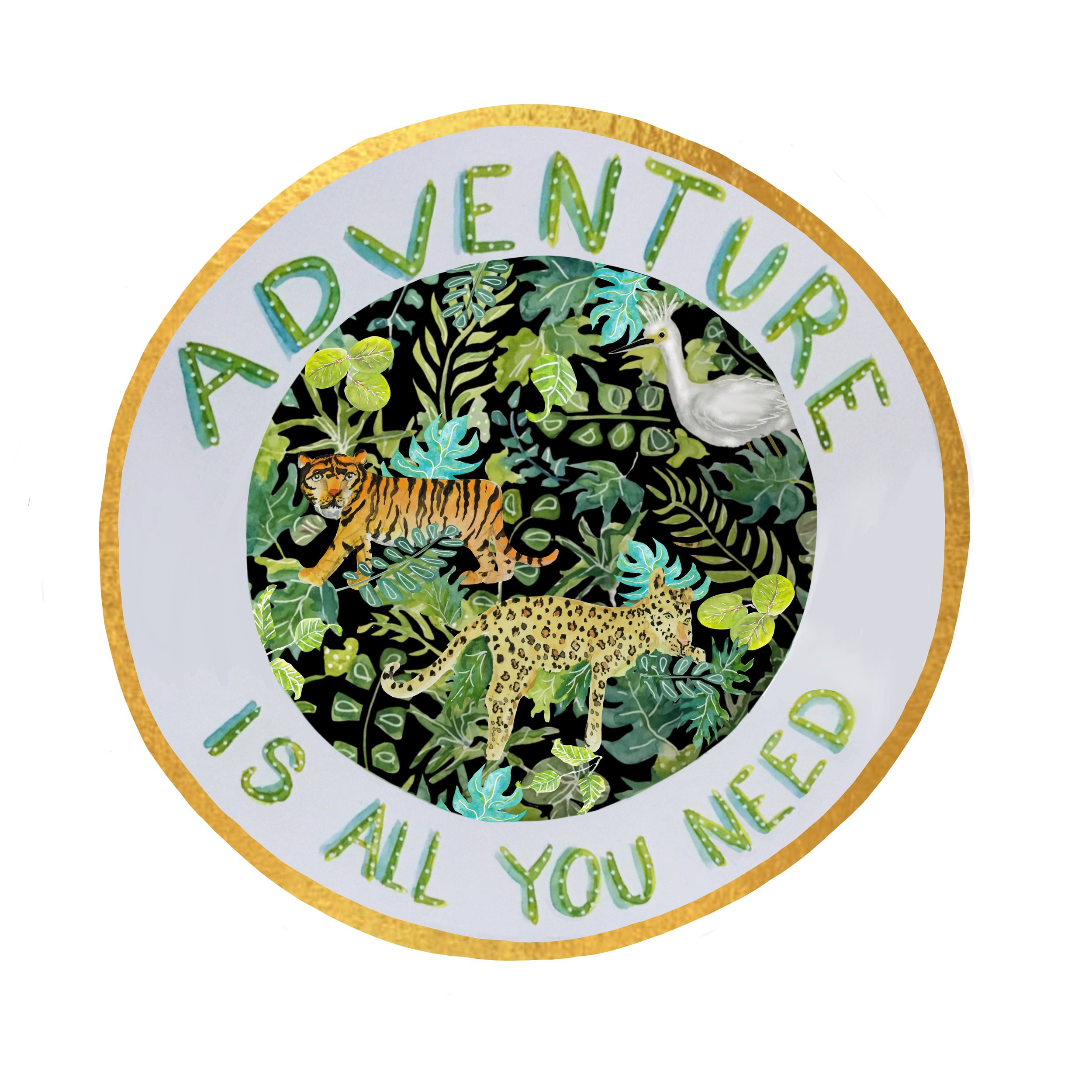 Adventure is all You Need