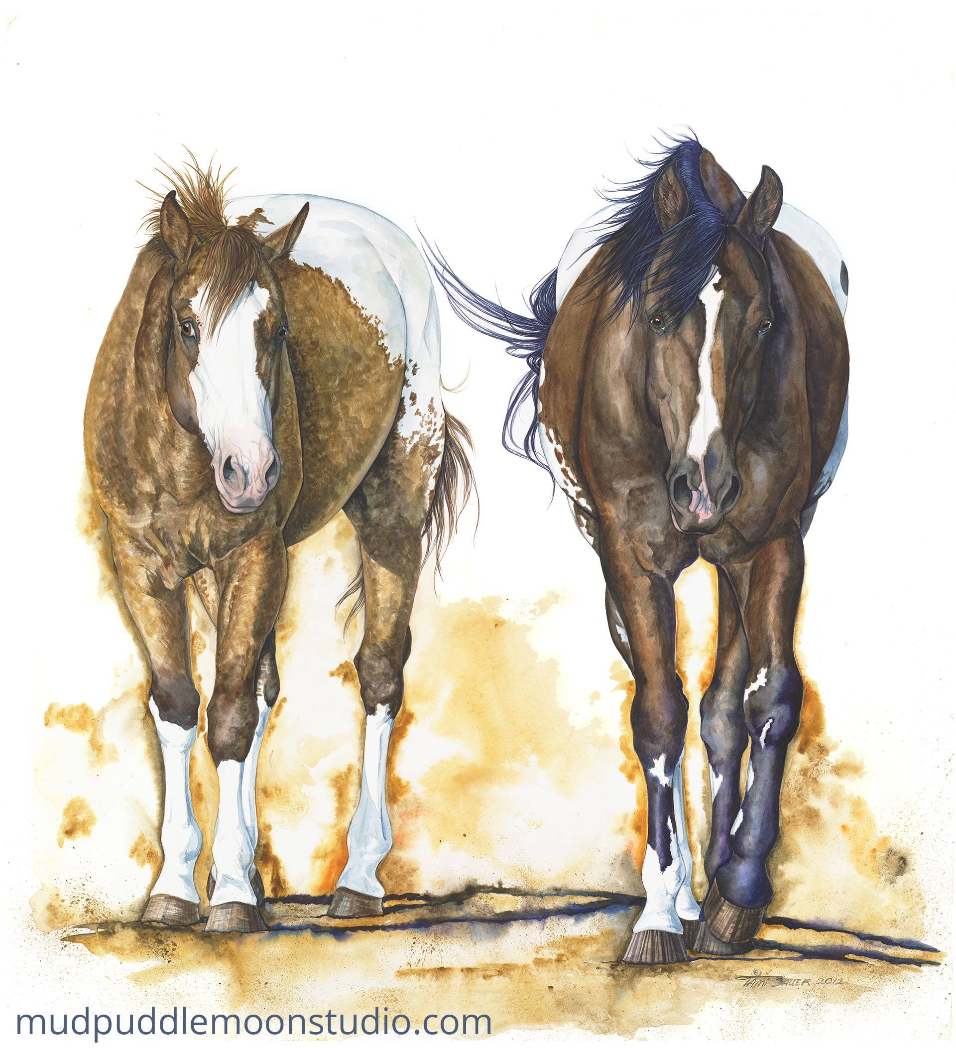 Appaloosa Duo
