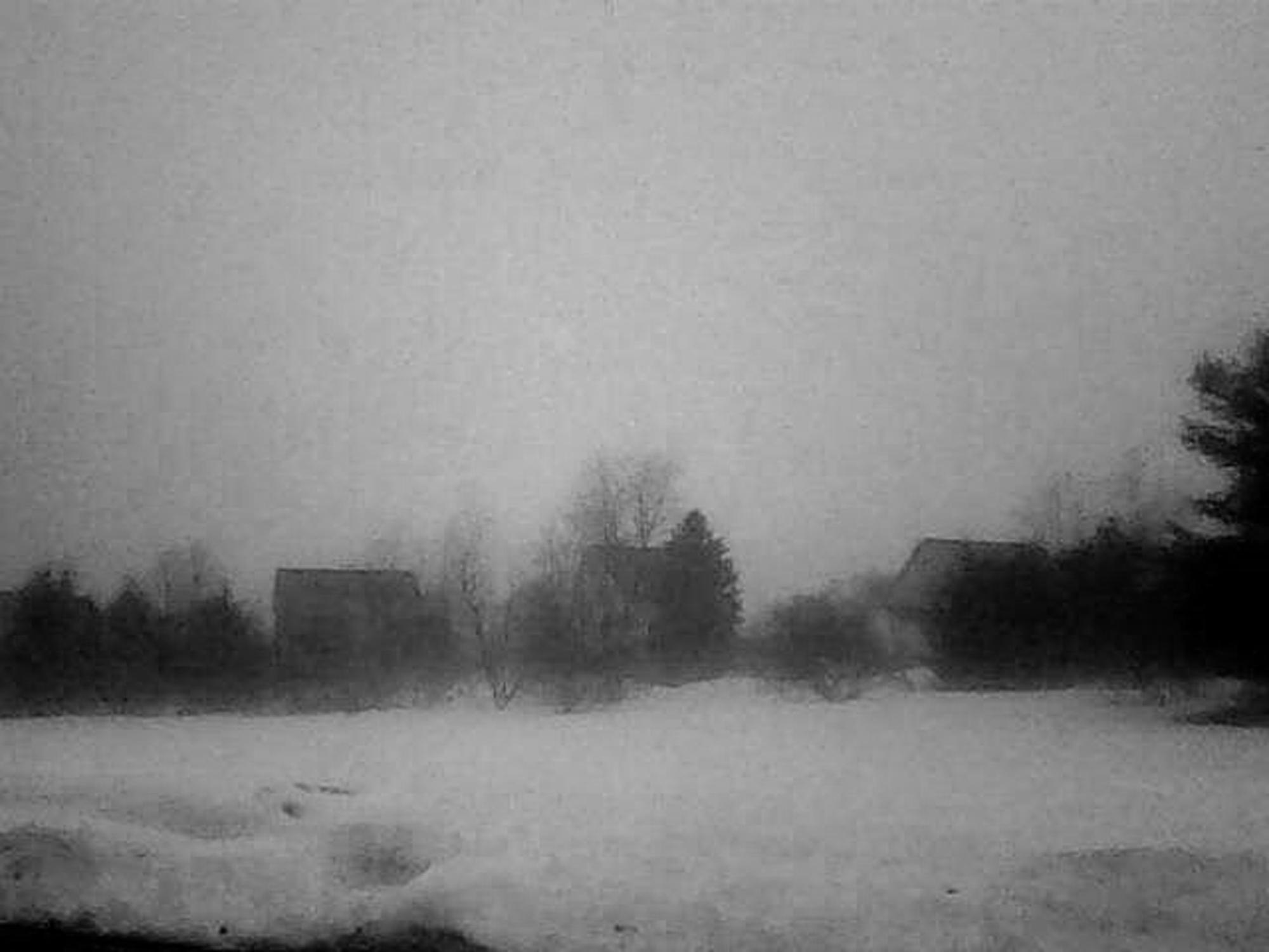JoanneColeman_Winter Fog.jpg