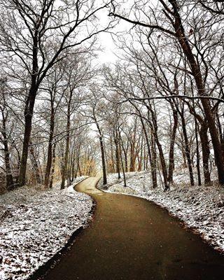Tina Hamel_Winter Walk.jpg
