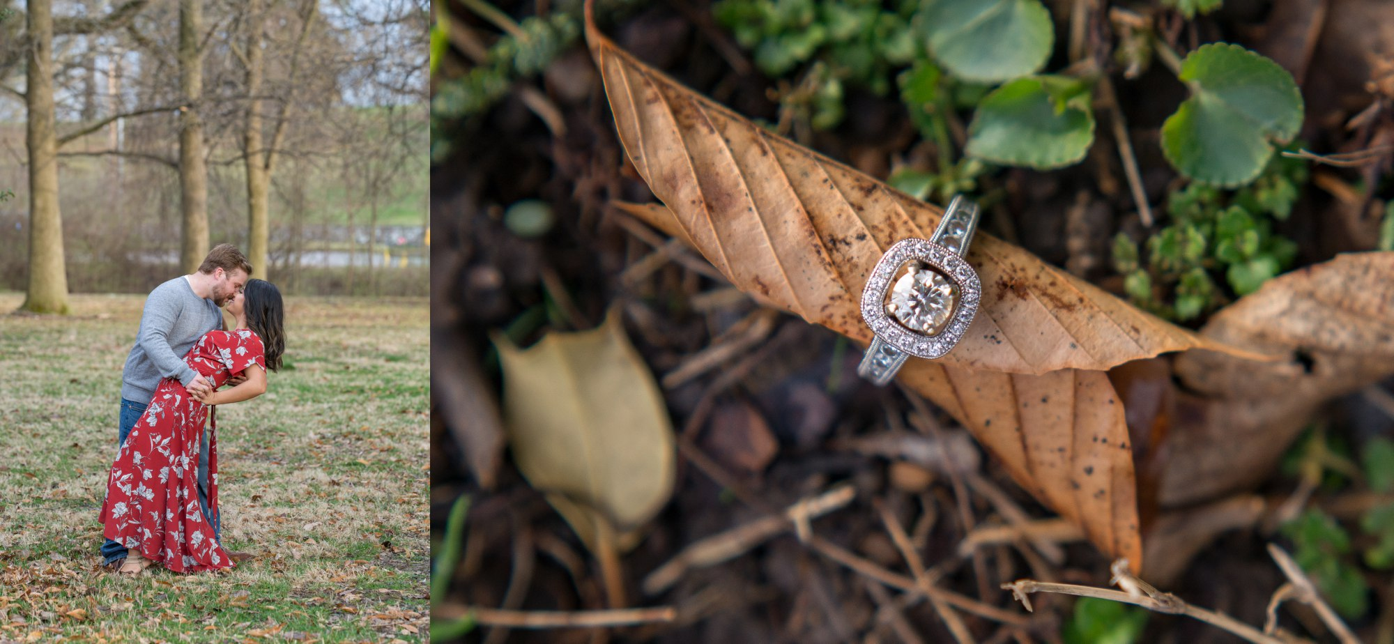 Forest Park Engagement Session and Stunning Engagement Ring