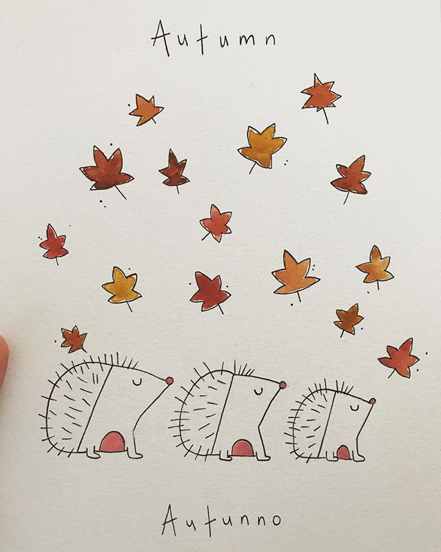 Autunno 🍁 . . . . .  #seasons #animals #illustration #printmaking #smallbusiness #illustrator #draw #ink #flowers #floral #wild #ink #create #design #artwork #leaves #autumn #stationery #greatoutdoors #make #childrens #childrensbooks #nursery #baby #organic #stories #storyboard #instaart #bookstagram #littleinklondon