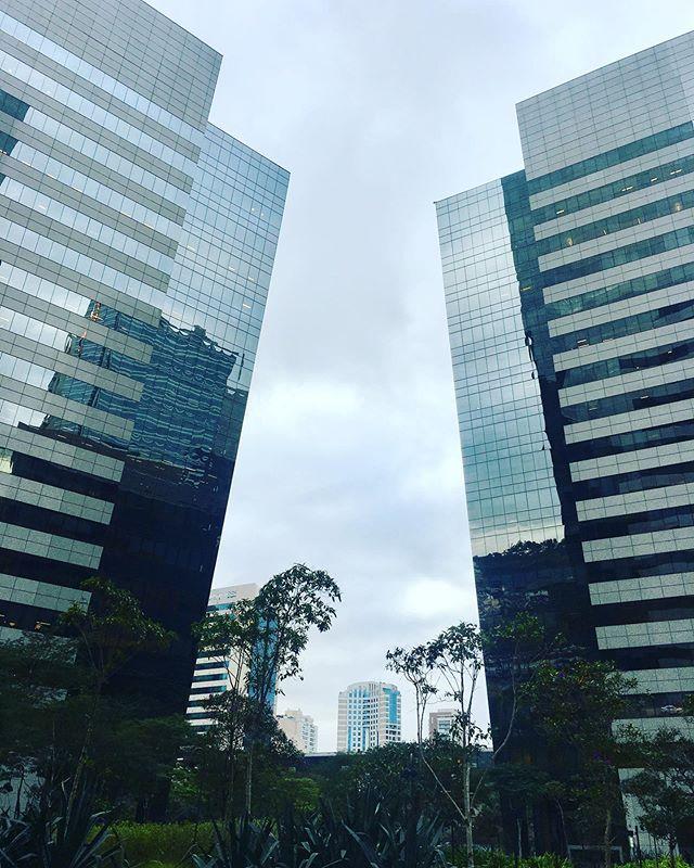 Pausa para admirar a arquitetura paulistana antes de atender o primeiro cliente dessa manhã fria. #coachingexecutivo