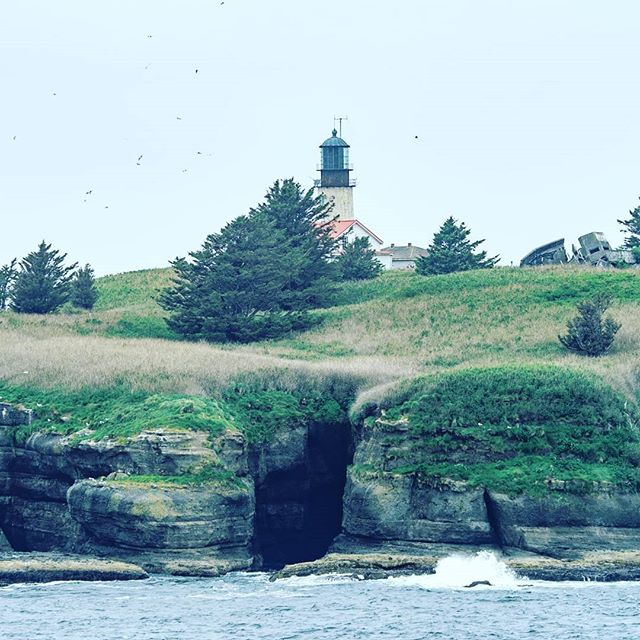 Cape Flattery Lighthouse. Located at the most northwesterly point of the lower 48 United States.