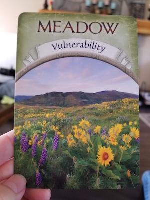 MEADOW - Earth Magic Oracle by Steven D. Farmer