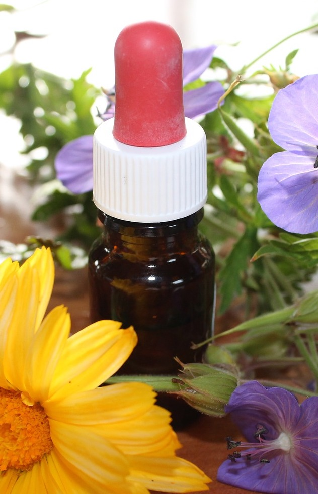 St. John's Wort Flower Essence, natural medicine, herbal remedies, flower essences, wild flowers