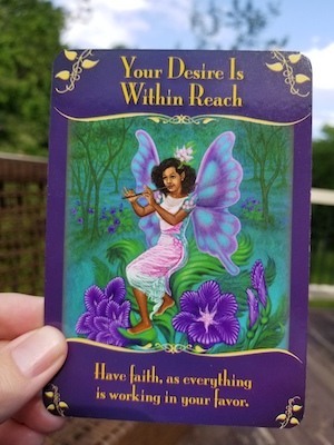 YOUR DESIRE IS WITHIN REACH: Magical Messages from the Fairies Oracle, Doreen Virtue