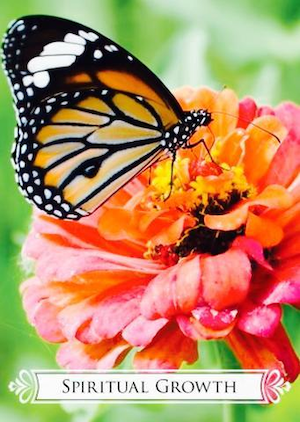 SPIRITUAL GROWTH: Butterfly Oracle for Life Changes