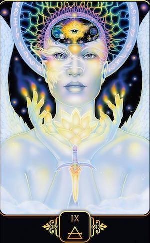 NINE OF AIR: Dreams of Gaia Tarot - Ravynne Phelan