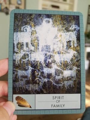 SPIRIT OF FAMILY: The Shaman's Oracle - John Matthews & Wil Kinghan