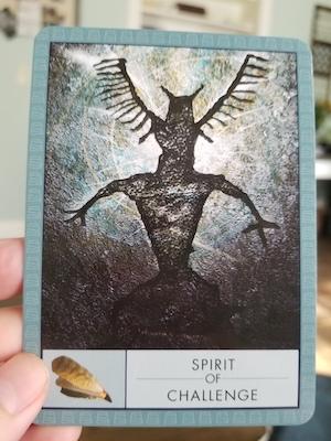 SPIRIT OF CHALLENGE: The Shaman's Oracle - John Matthews & Wil Kinghan