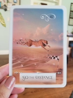 GO THE DISTANCE: Wisdom of the Oracle by Colette Baron-Reid
