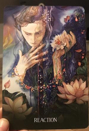 REACTION: Sacred Earth Oracle by Toni Carmine Salerno & Leela J. Williams