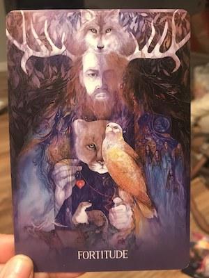 FORTITUDE: Sacred Earth Oracle by Toni Carmine Salerno & Leela J. Williams