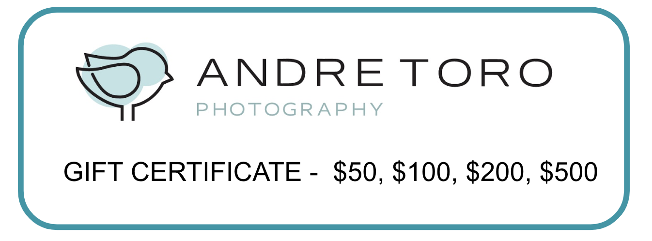 Photo Session Gift Certificates - Andre Toro Photography