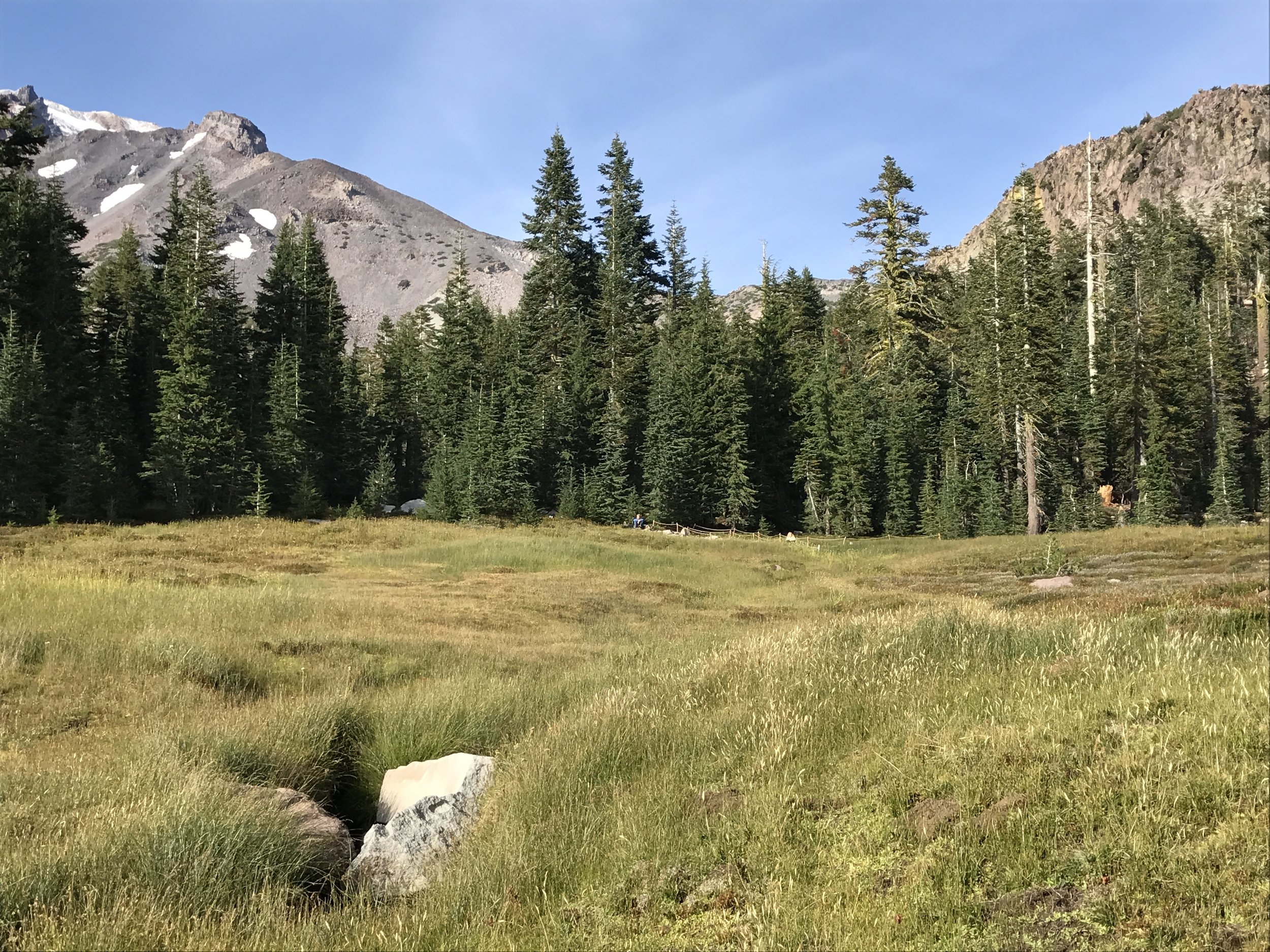 Panther Meadows