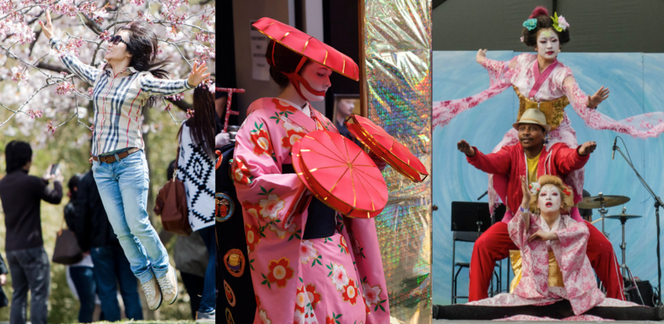 Arts Japan 2020 Cherry Blossom Festivals.png