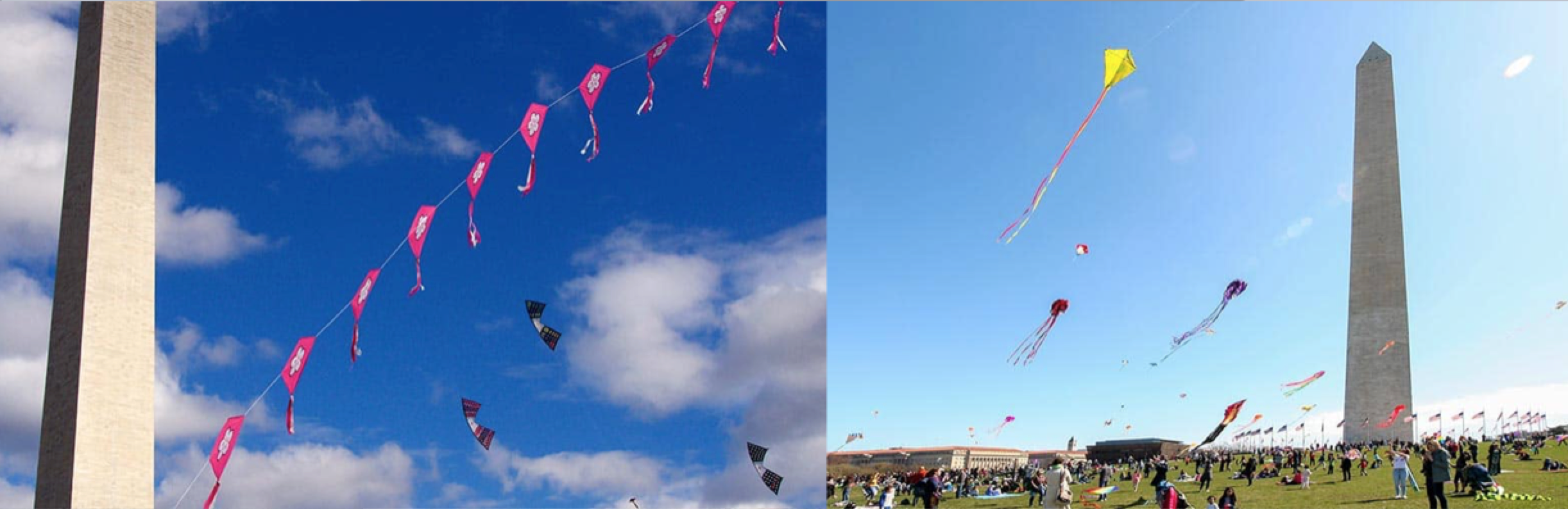 Cherry Blossom Kite Festival in Washington, D.C.