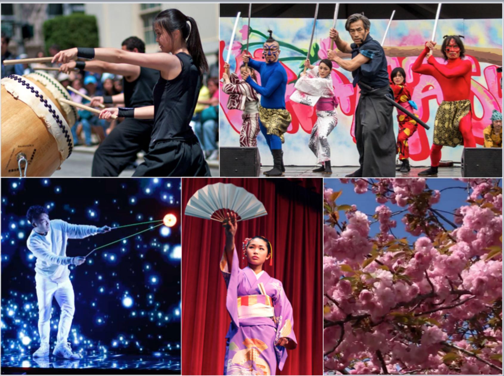 Philadelphia Cherry Blossom Festival 2020.2019 Cherry Blossom Festivals Across The United States