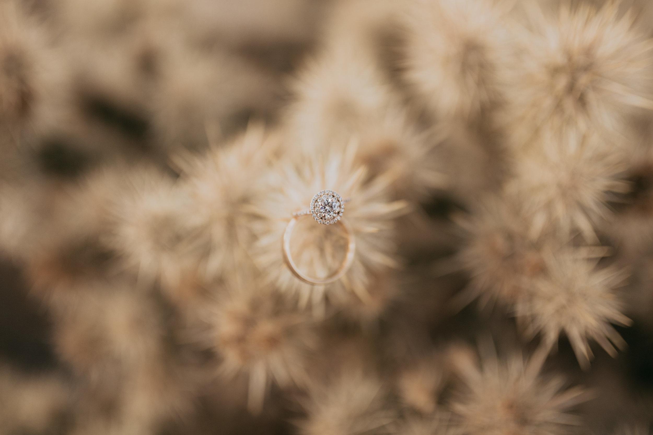 palmsprings_joshuatree_california_wedding_photographer-3.jpg