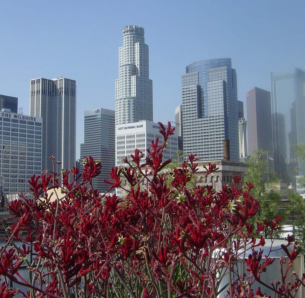 INCENTIVES FOR GREENER L.A. BUSINESSES -