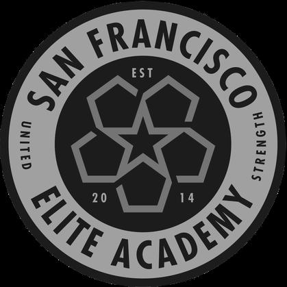 SFEA logo.png