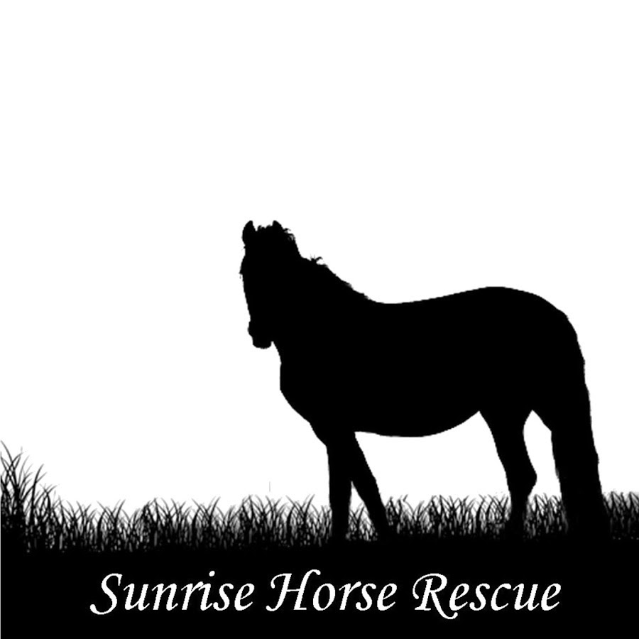 sunrise horse rescue logo.jpg