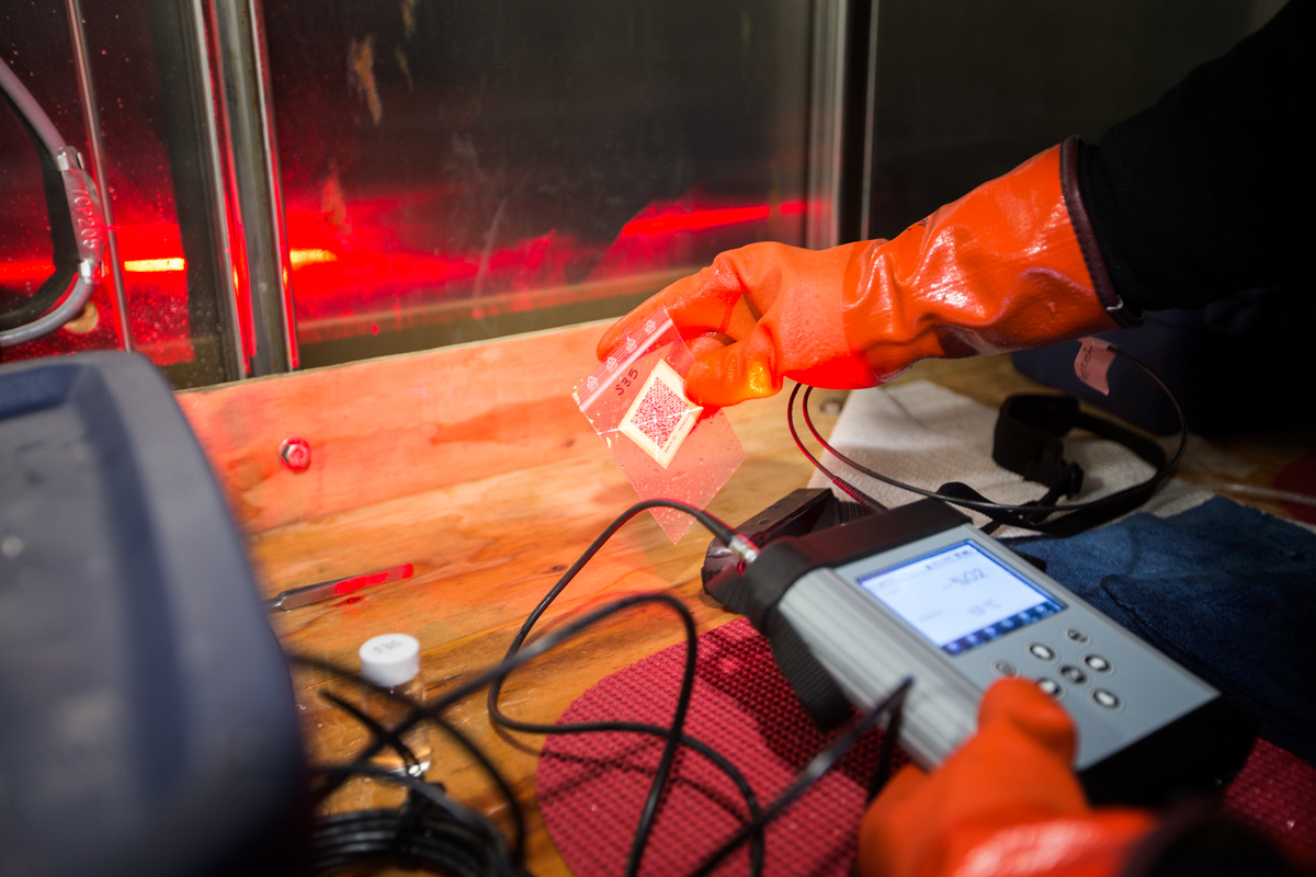 Close up of the oxygen reader scanning a barcode for vial identification.Photo credit: Brendan Smith