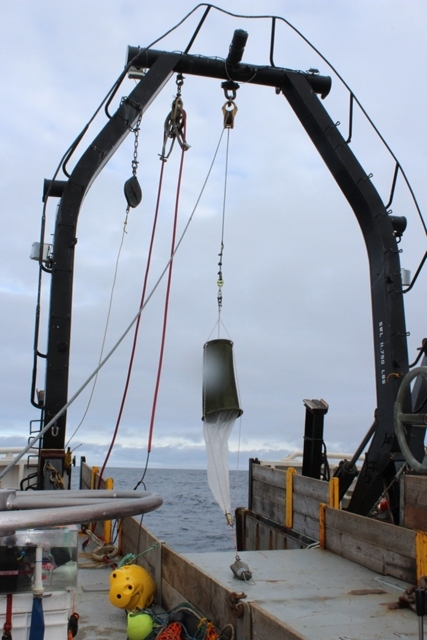 A Juday net is deployed from the R/V  Ocean Starr . Photo credit: Ed Farley