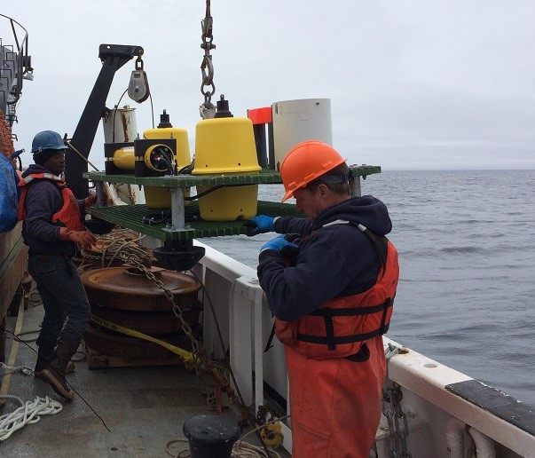 Deploying an upward-looking sonar to monitor Arctic cod throughout the year.