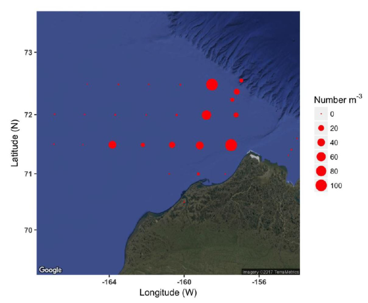 The map shows the abundance of zooplankton > 2 mm in the bongo nets, as estimate from the rough count.