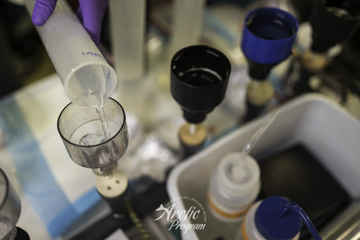 Processing seawater samples aboard the R/V  Ocean Starr . Photo credit: Brendan Smith/NPRB