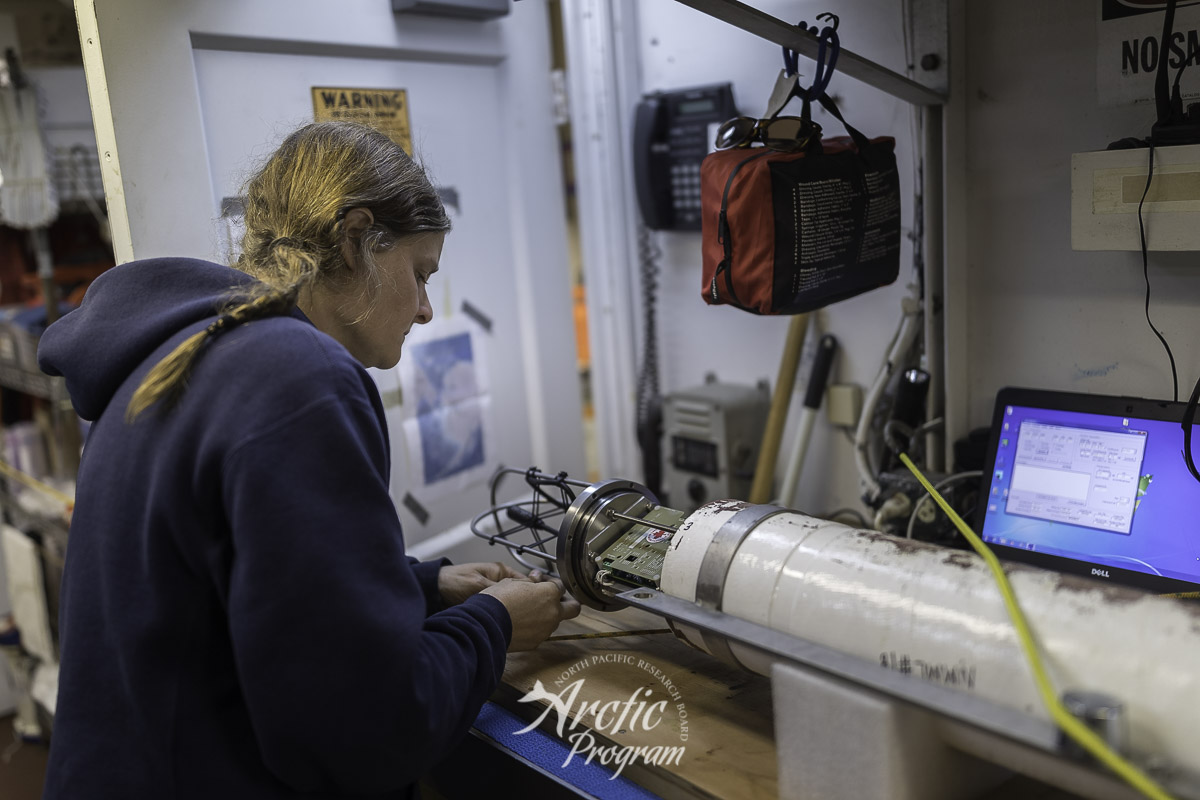 Catherine Berchok checking the acoustic monitoring instrument called an Aural. Photo credit: Brendan Smith/NPRB