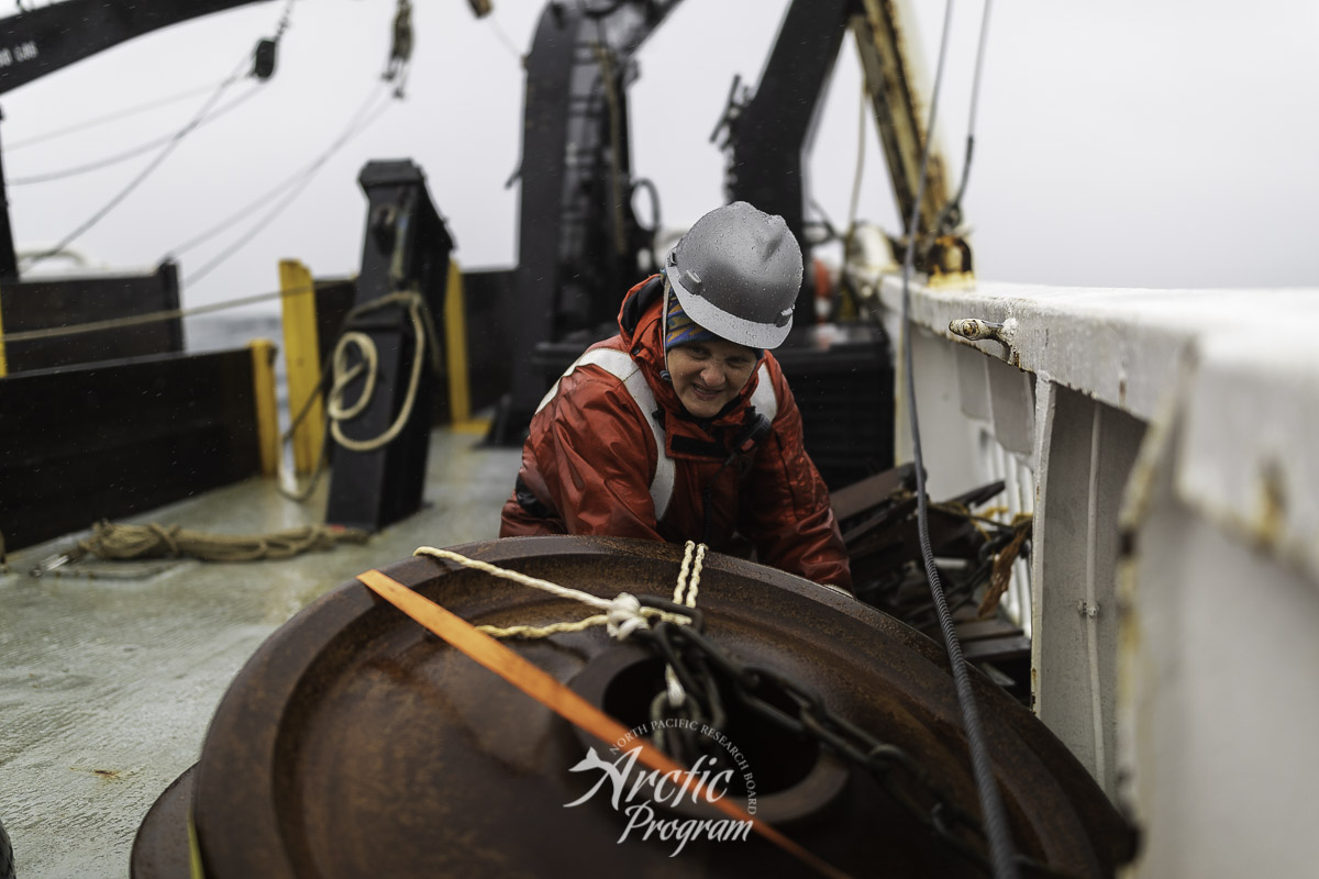 Catherine Berchok unbuckling the train wheel anchors for her acoustic mooring. Photo credit: Brendan Smith/NPRB