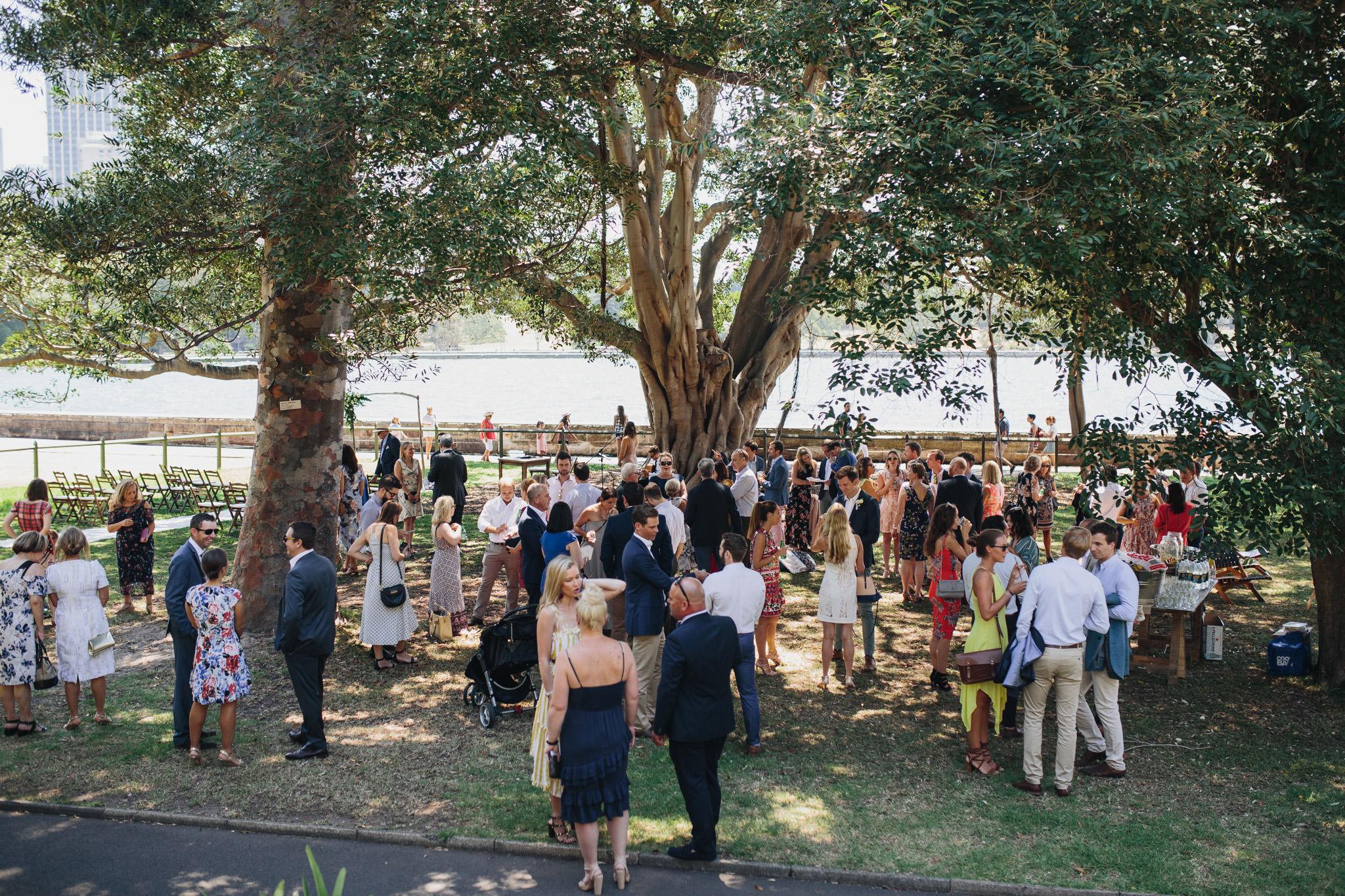 Wedding guests at Sydney Botanic Gardens Wedding Harbour View Lawn