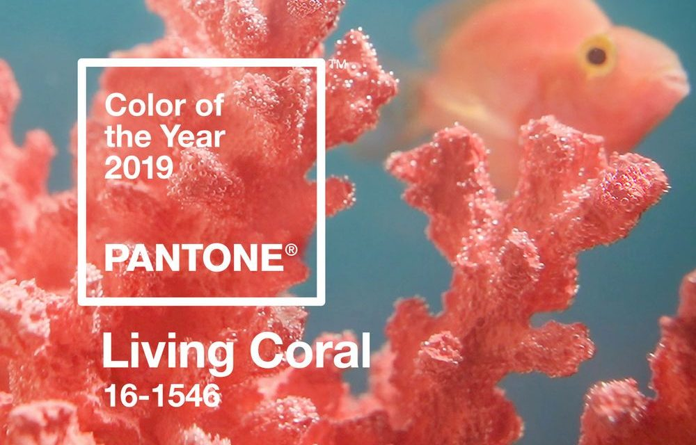 Living Coral.jpeg
