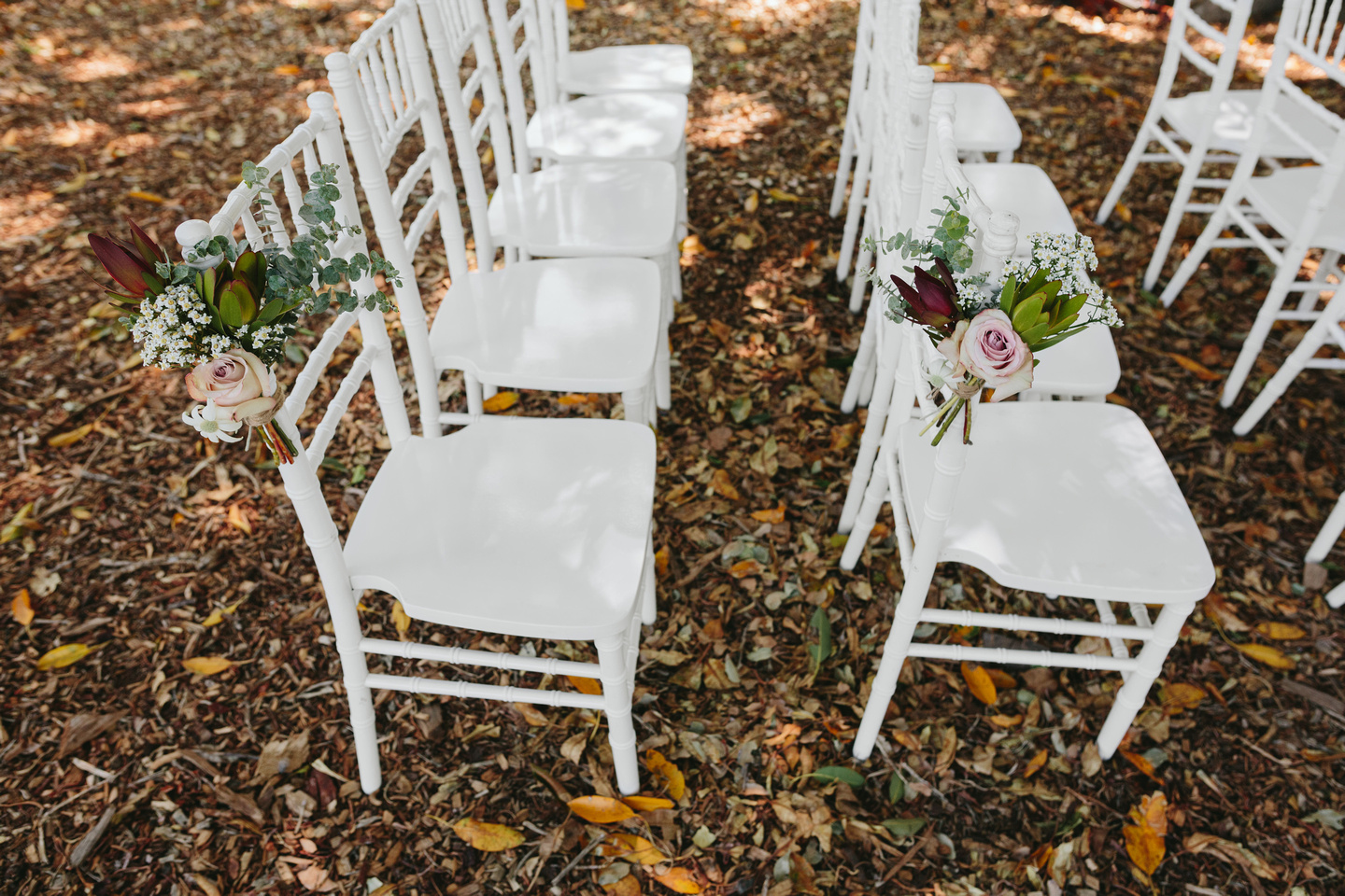 Wedding ceremony set up at the Fig Tree Lawn Royal Botanic Garden Sydney with beautiful tiffany chairs and wedding flowers