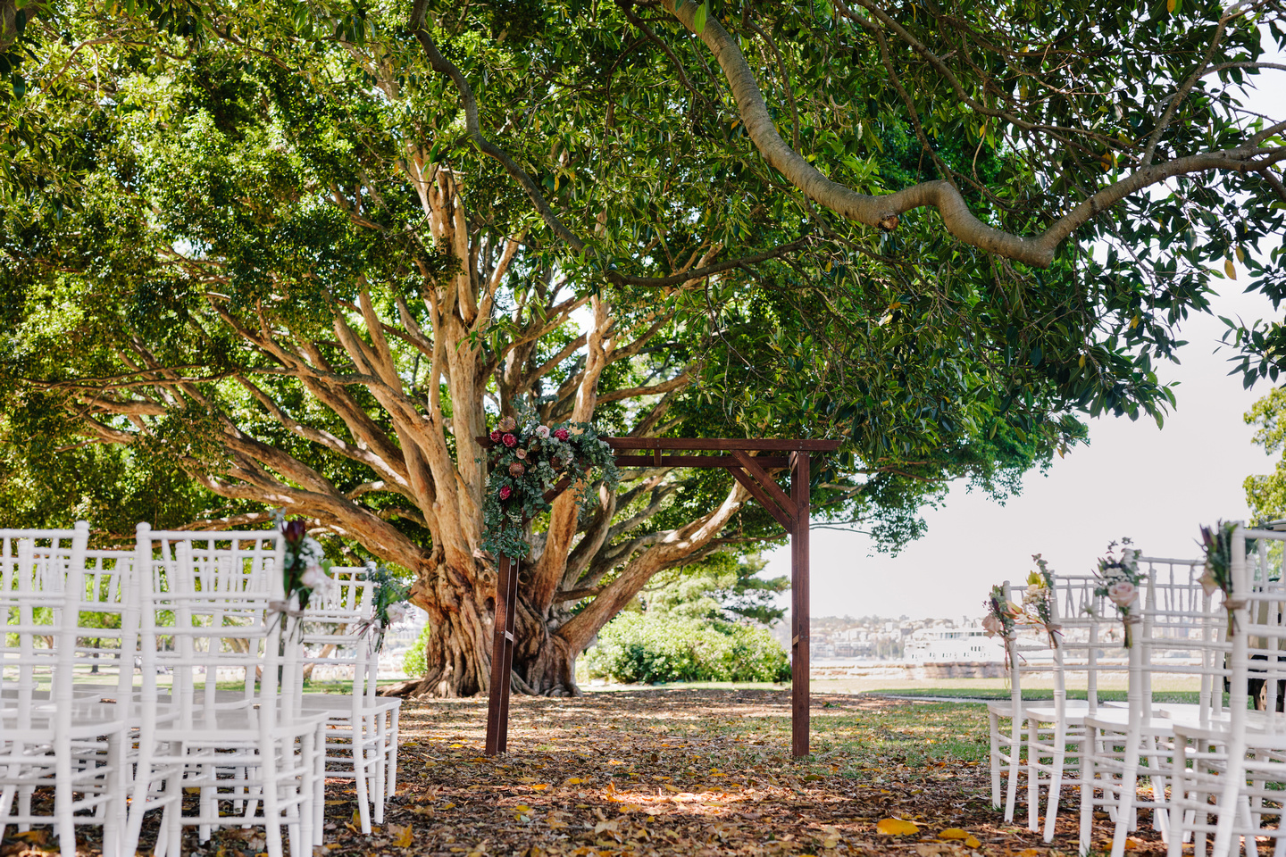 Timber arbour and tiffany chairs for a wedding ceremony at the Fig Tree Lawn Royal Botanic Garden Sydney.
